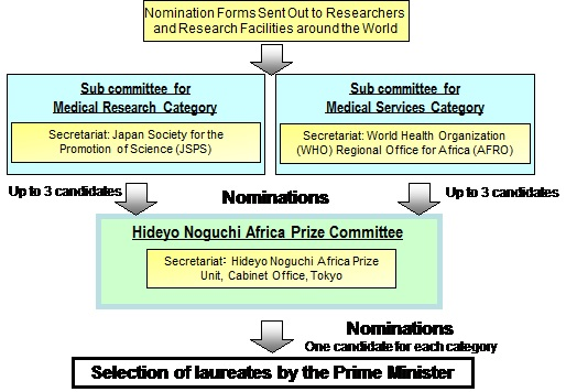 Selection Process for the Hideyo Noguchi Africa Prize